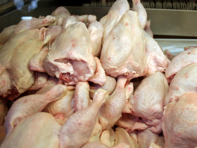 chicken carcases in tray