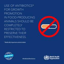 AntibioticResistance3a